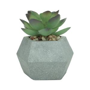 Vaso Concreto Hexagon Sucullent Cinza Com Planta 8 x 6.5 x 6.5 cm